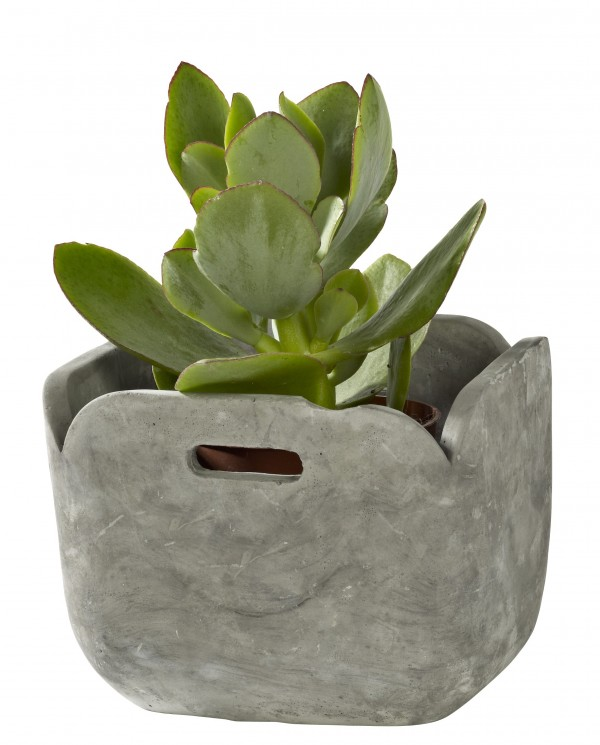 casa_drp_pot_cement