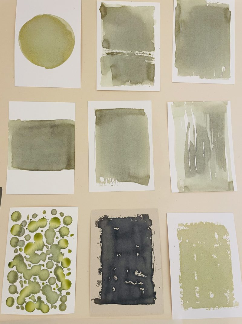 papier badigeonné avec la solution pour cyanotype